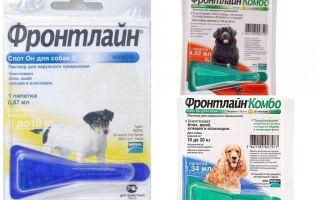 Капли фронтлайн от блох для собак