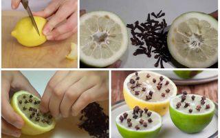 Лимон с гвоздикой от комаров для детей и взрослых
