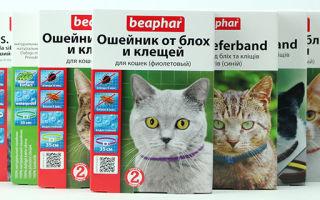 Ошейник беафар от блох для кошек и собак